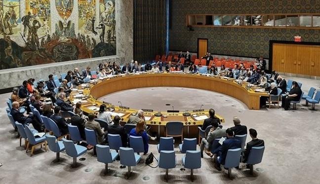 شورای امنیت بار دیگر درباره عملیات ترکیه در سوریه تشکیل جلسه می دهد
